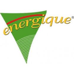 Energique Volwassen hond 750gr